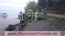 29.04.2017 PKW in Ammersee